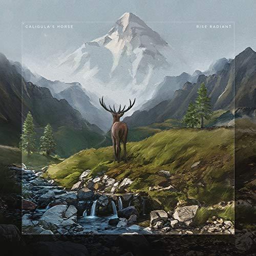 Rise Radiant (Gatefold black 2LP+CD) [Vinyl LP]