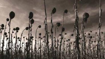Dead Can Dance – das erste Studio-Album seit 16 Jahren!