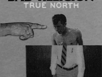 Bad Religion Cover