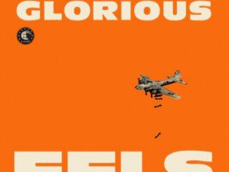 eels-Cover
