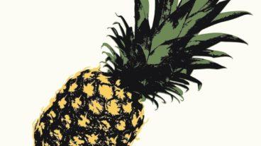 Die Blockflöte des Todes verwöhnt uns mit Ananas, kleinen Ohrwürmern und witzigen Anekdoten