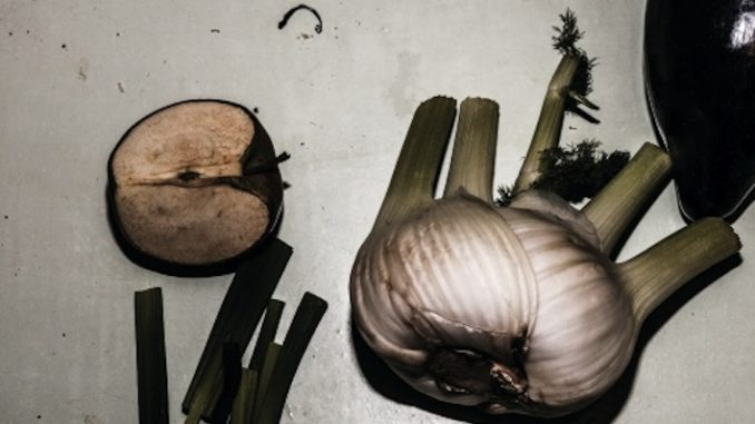 still_life_with_eggplant-motorpsycho