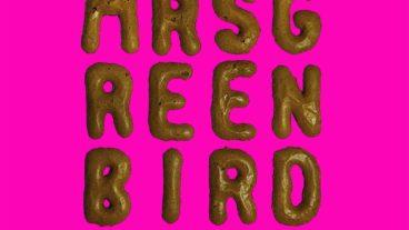 Mrs. Greenbird live: Ein Konzertmitschnitt aus dem Kölner Gloria auf CD und DVD