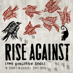 Rise Against Long Forgotten Songs: B-Sides & Covers 2000-2013 bei Amazon bestellen