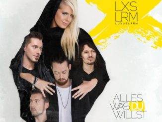 Luxuslärm Alles was du willst CD Cover