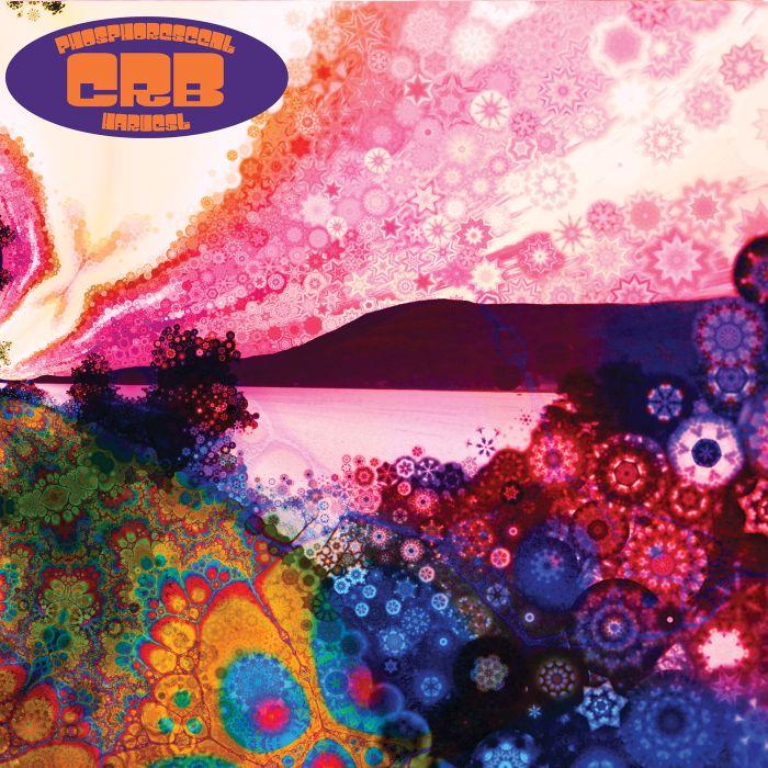 """Die musikalische Leichtigkeit hat einen Namen: """"Phosphorescent Harvest"""" von Chris Robinson Brotherhood"""