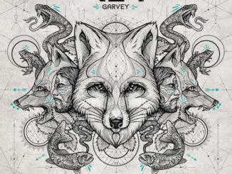 reagarvey-album-12x12final 800