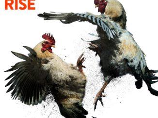 Kopec Rise Album Cover