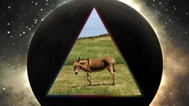 Gov't Mule feiern 20 jähriges Bestehen mit drei besonderen Live Veröffentlichungen!