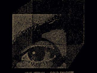 Asaf Avidan Gold Shadow Album Titel