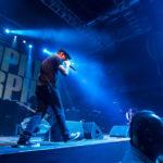 Konzert - Dropkick Murphys in Köln