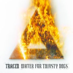 Tracer Water For Thirsty Dogs bei Amazon bestellen