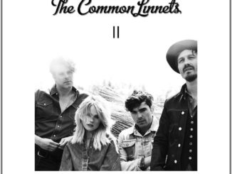 Common_Linnets_Cover