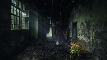 """Pantaleon – die Progmetaller mit ihrem Debütalbum """"Virus"""""""