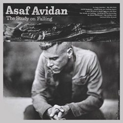 Asaf Avidan The Study On Falling bei Amazon bestellen