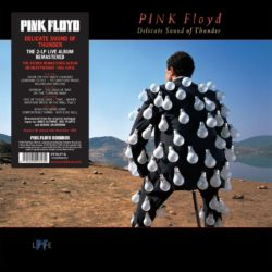 "Pink Floyd ""A Collection Of Great Dance Songs"" / ""Delicate Sound Of Thunder"" bei Amazon bestellen"