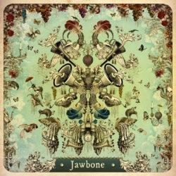 Jawbone Jawbone bei Amazon bestellen