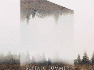 Buffalo Summer Cover