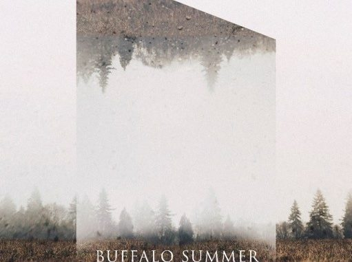 Buffalo Summer Cover