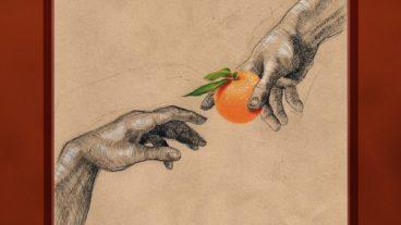 """My Ugly Clementine: """"Vitamin C"""" – die Erschaffung der Clementine"""