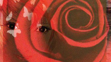 """Willie Nelson – """"First Rose Of Spring"""": Das 70. Studioalbum des Veteranen"""