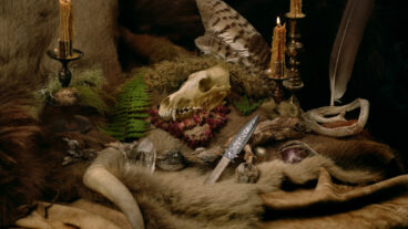 Wolves In The Throne Room: Black Metal vom Feinsten