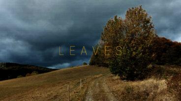Leaves: Emo-Punk-Debüt bei Midsummer Records